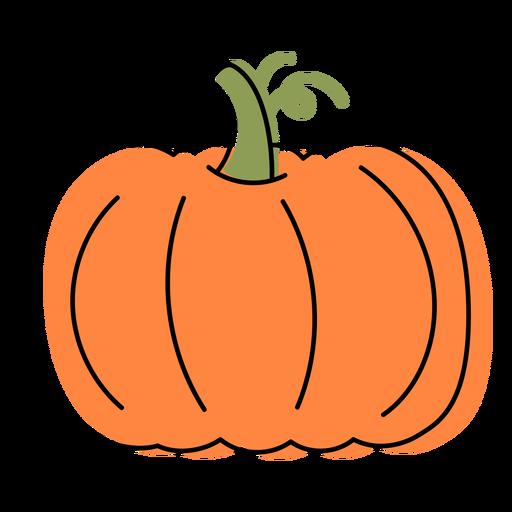Big pumpkin vegetable