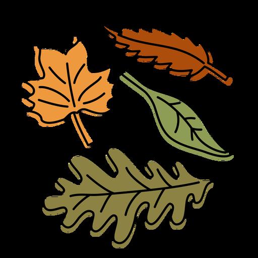 Nature-Fall-NotebookContour-CR - 4