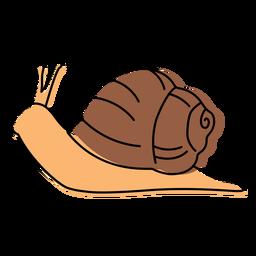 Snail animal color stroke