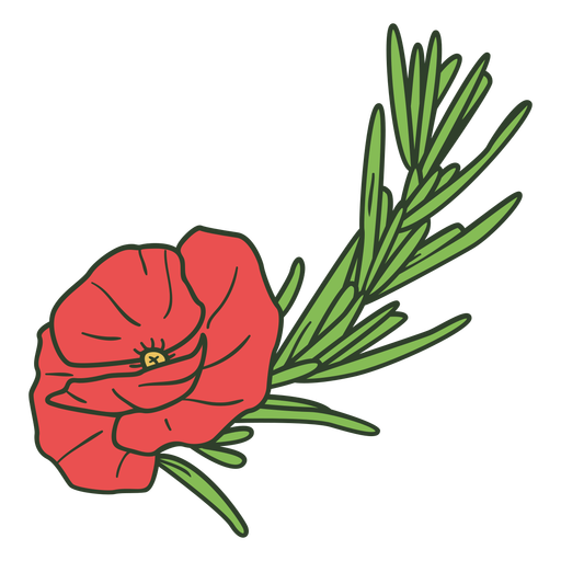 Anzac day red flower color stroke