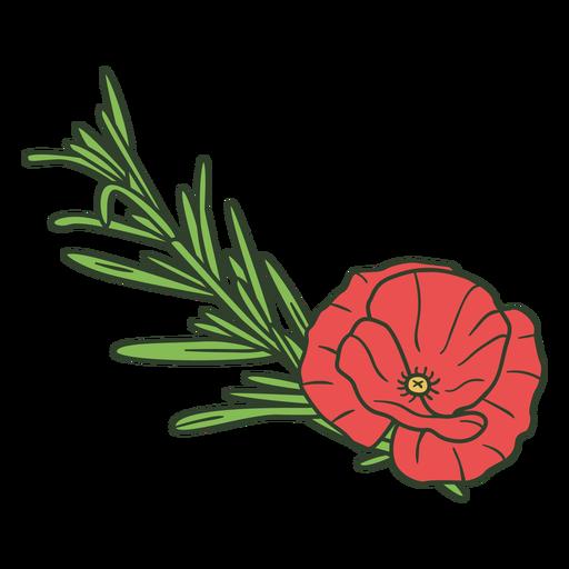 Rose decoration nature