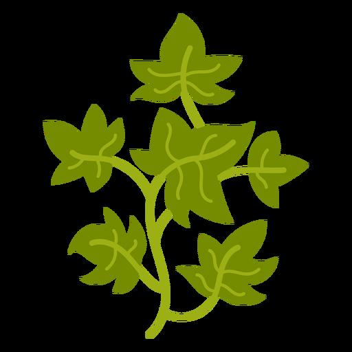 Climbing plant flat