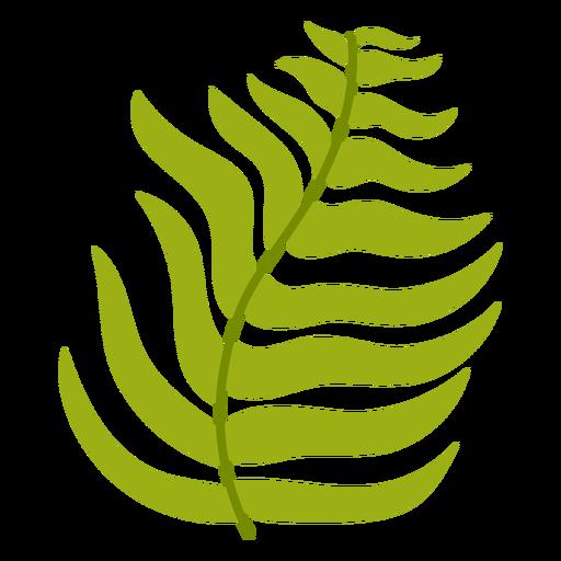 Fern leaf flat