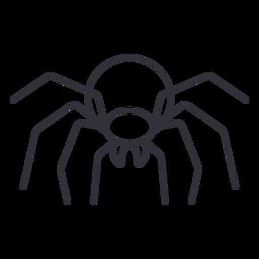 Frontal spider geometric stroke