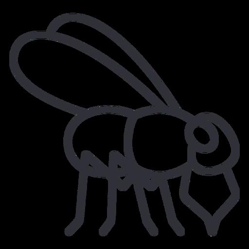 Side fly geometric stroke