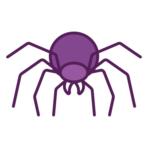 Frontal spider geometric color stroke