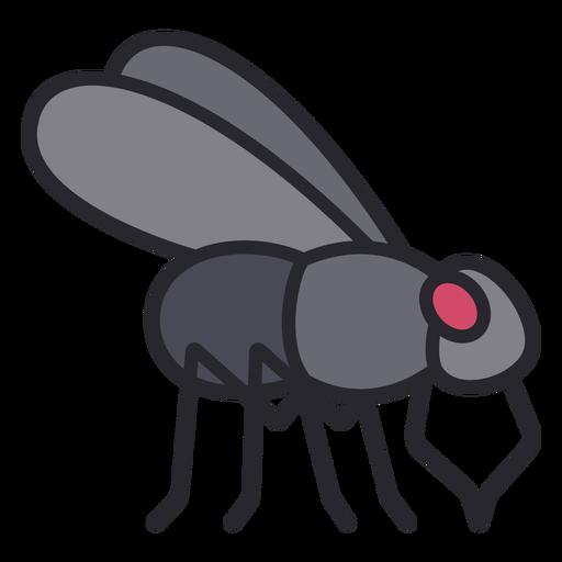 Side fly geometric color stroke