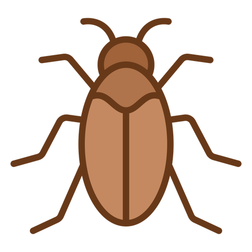 Simple beetle from top geometric color stroke