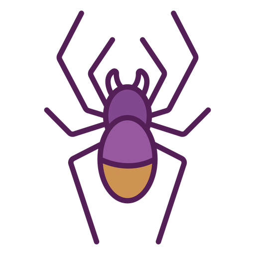 Spider from top geometric color stroke