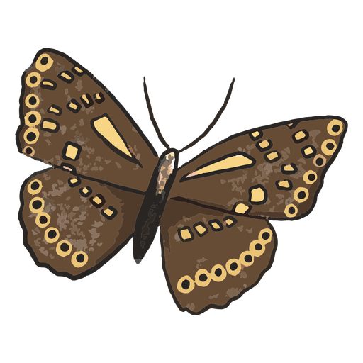 Brown butterfly insect illustration