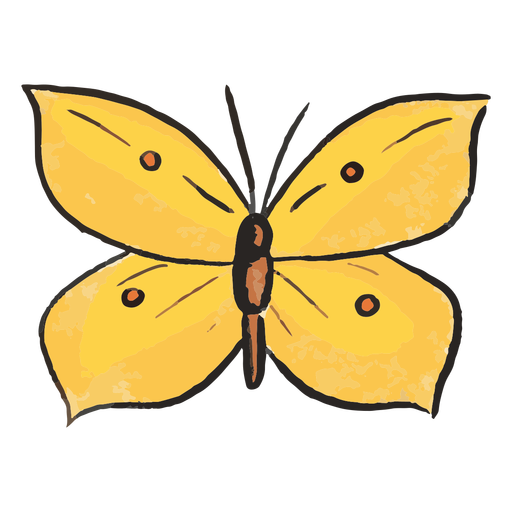 Yellow butterfly insect illustration