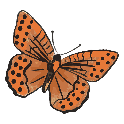 Orange butterfly insect illustration