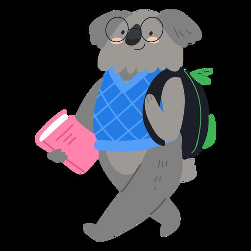 Cute koala student