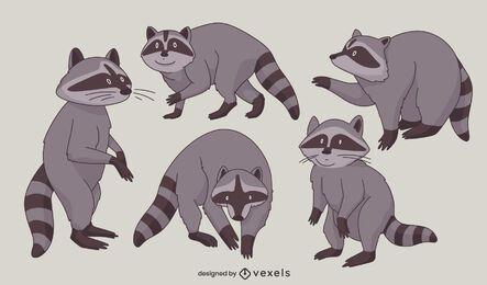 Conjunto de caracteres de poses de animais de guaxinim