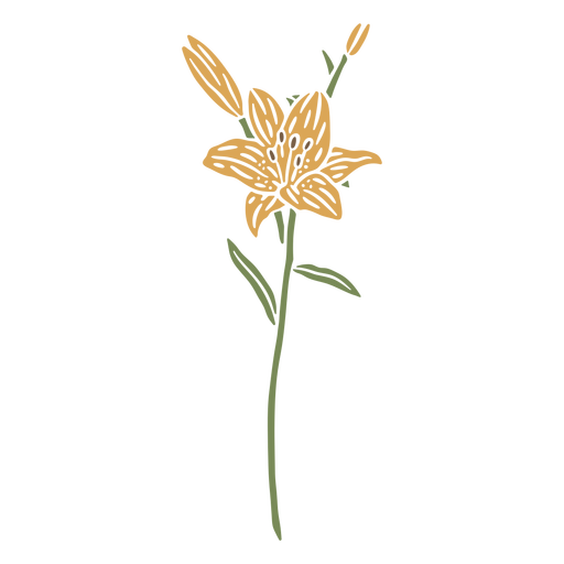 Daffodil flower and sapling cut out