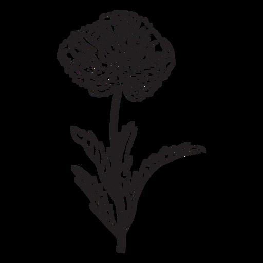 Wild flower stroke