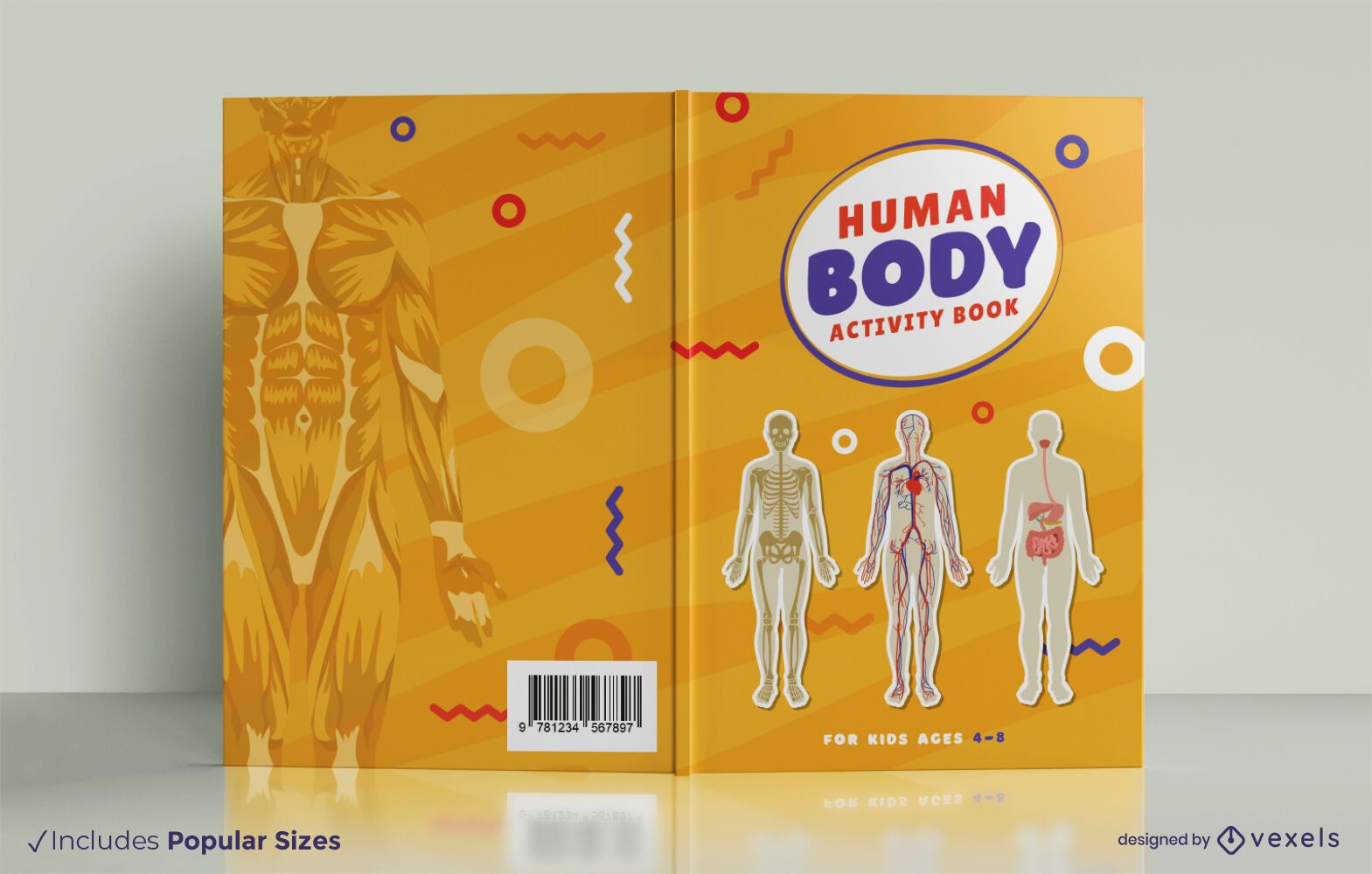 Human anatomy book cover design