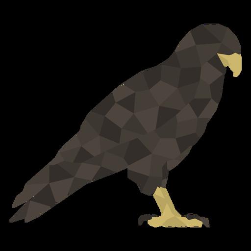 Black eagle polygonal