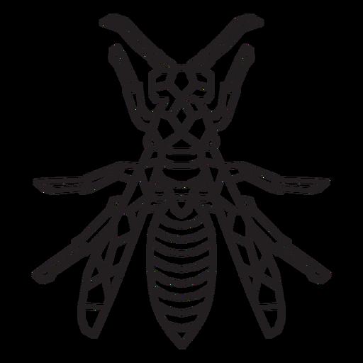 Bee top view stroke