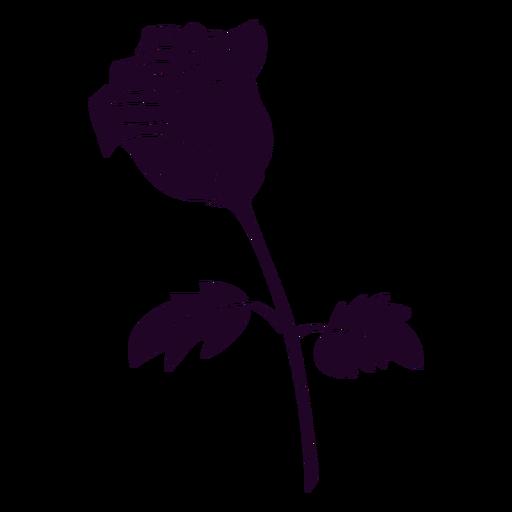 Black rose cut out