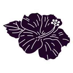 Hibiscus flower cut out