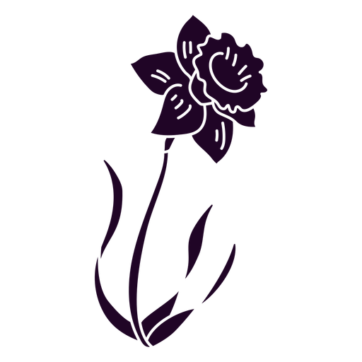 Daffodil flower cut out