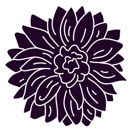 Sunflower top view cut out
