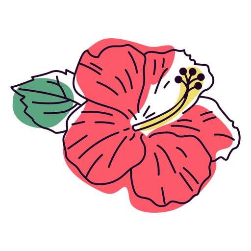 Pale red hibiscus flower color stroke