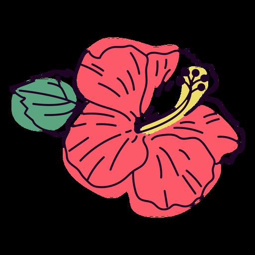 Traço colorido de flor de hibisco vermelho-claro