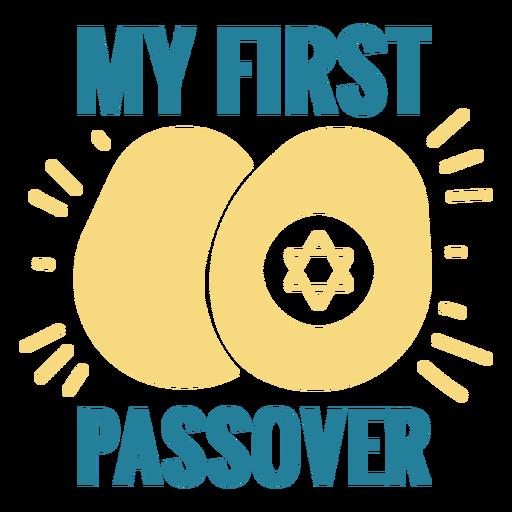 Passover jewish holiday badge