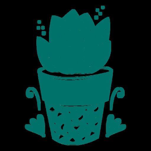 Succulent plant in pot cut out