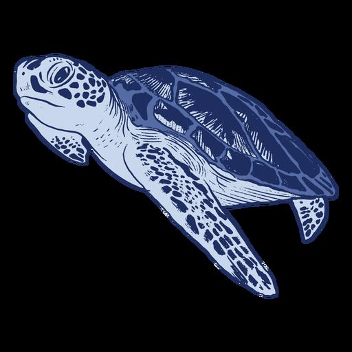 Blue sea turtle monochromatic