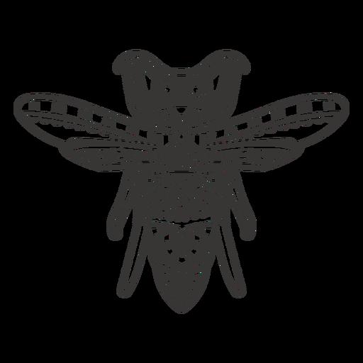 Mandala wasp