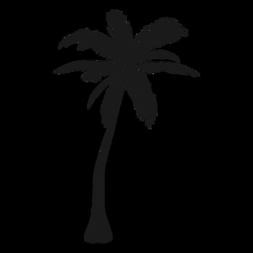 Bent palm tree silhouette