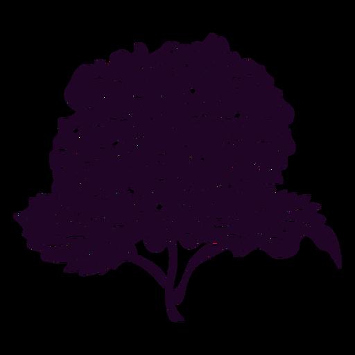 Hydrangea flower cut out