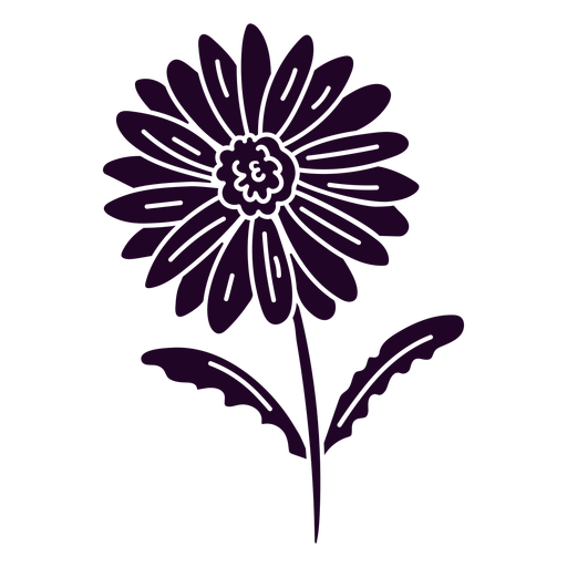 naturaleza-botánica-ContourLineOverlay-silueta-CR - 11