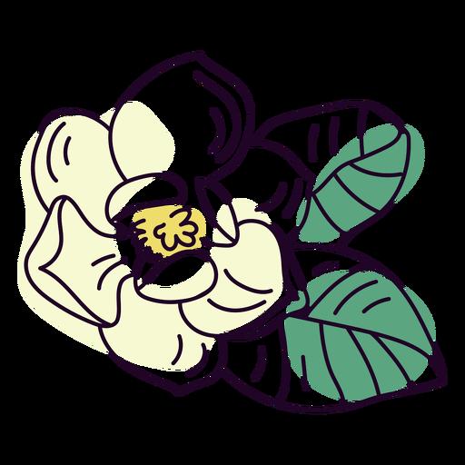 Jasmine flower color stroke