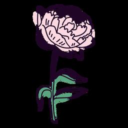 Trazo de color de flor de peonía