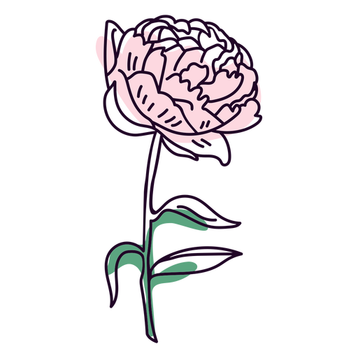 Traço de flor de peônia
