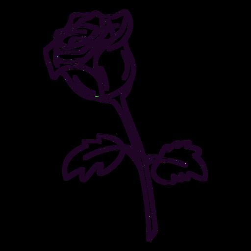 Single rose design stroke