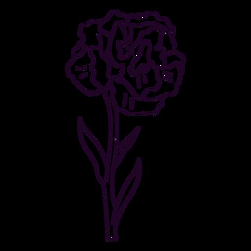 nature-botanical-ContourLineOverlay-silhouette-CR - 49