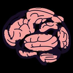 Brains color stroke