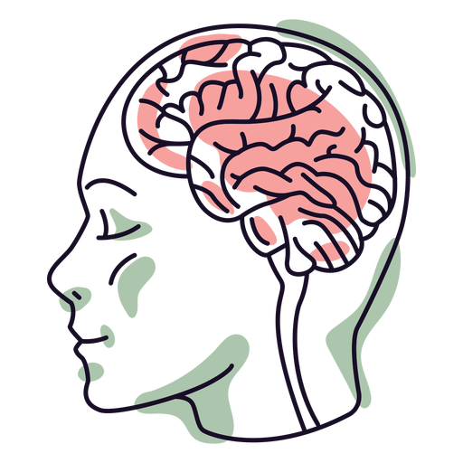 Head with brain color stroke