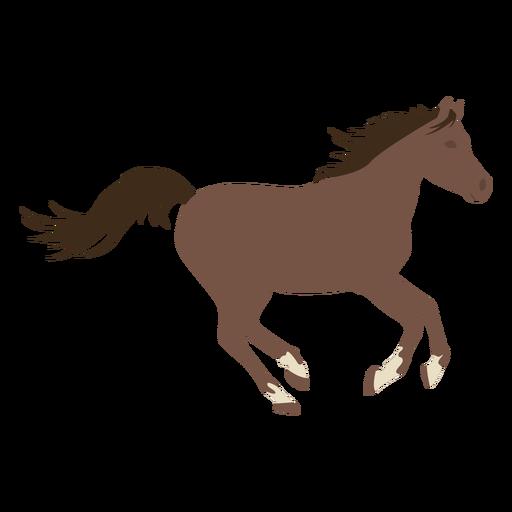 Horse galloping flat