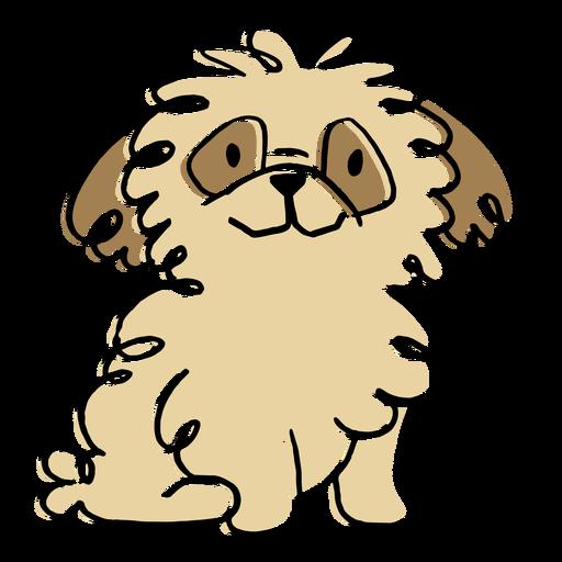 Fluffy dog pet doodle