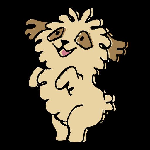 Fluffy dog jumping animal