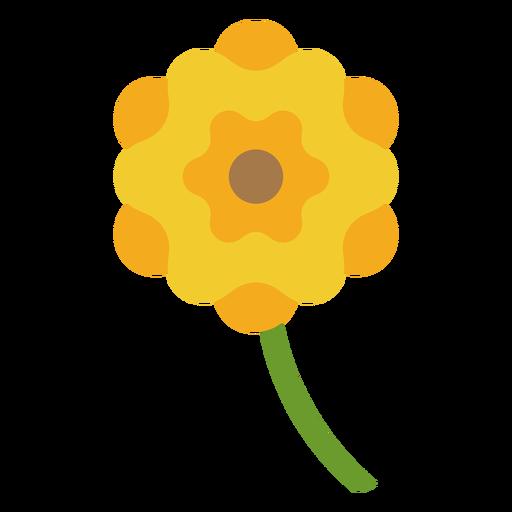 Yellow twelve petals flower flat