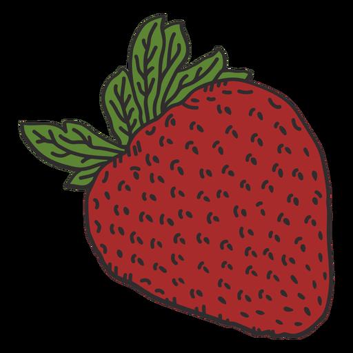 Leafy strawberry color stroke