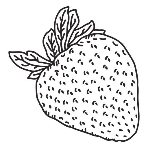Strawberry hand drawn element