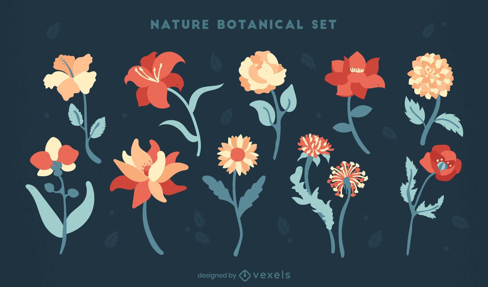 Flowers nature botanical garden set